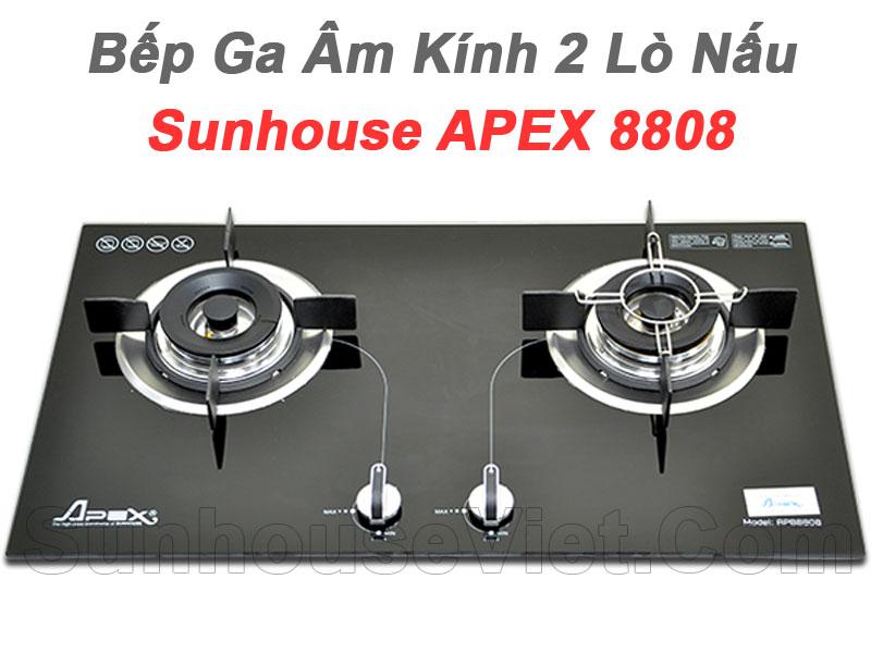 bep ga am kinh 2 lo nau cao cap sunhouse apb8808