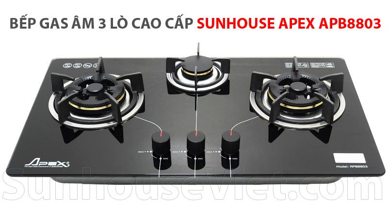 bep ga am kinh 3 lo nau sunhouse apb8803 cao cap