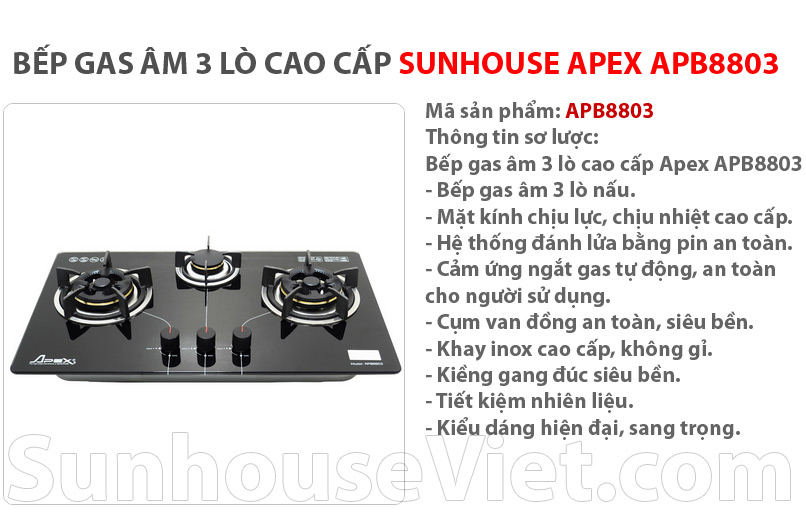 bep gas am bep cao cap sunhouse apb8803 3 lo nau